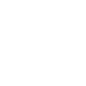 14_UNITED CARS_White